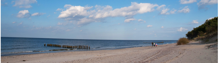 widok z plaży na morze bałtyckie